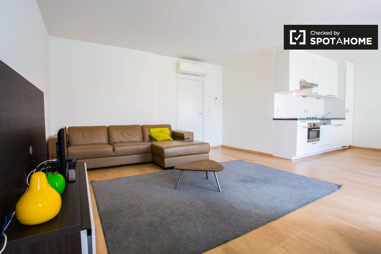 Modern 2-bedroom apartment with balcony for rent in Brussels City Center