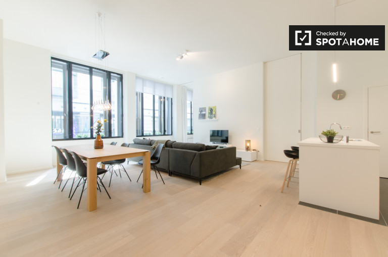 Luxurious 2-bedroom apartment for rent in central Brussels