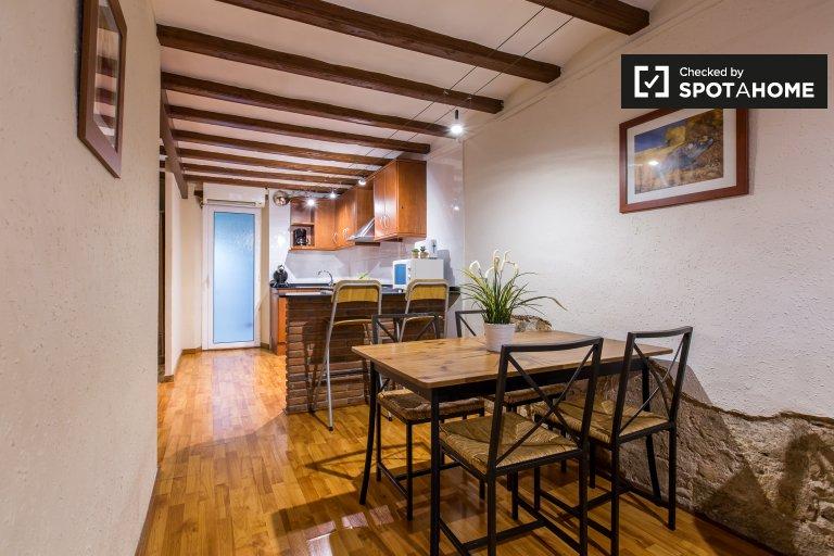 Studio-Wohnung zur Miete in Ciutat Vella