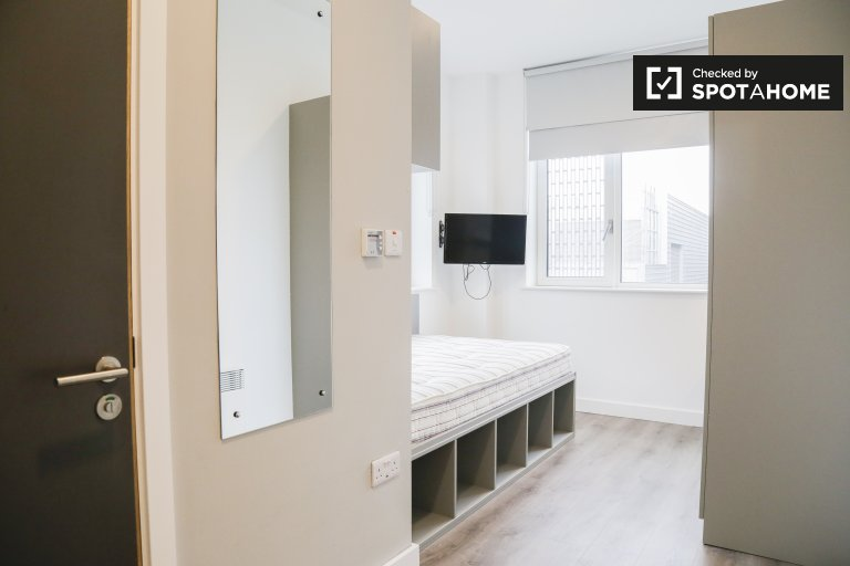 Contemporary room in 8-bed apartment in North Dock, Dublin
