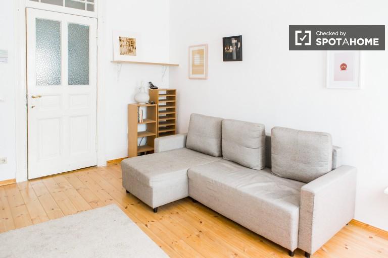 Monolocale in affitto a Mitte, centro di Berlino