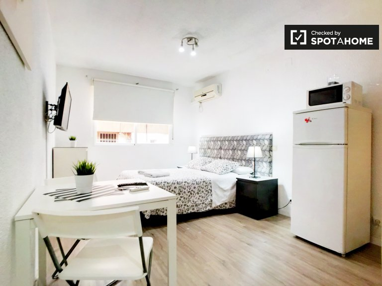Beautiful studio apartment for rent in Moncloa, Madrid