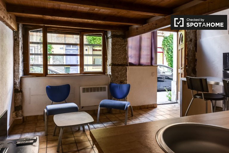 Spacious 3-bedroom apartment for rent in Guillotiére