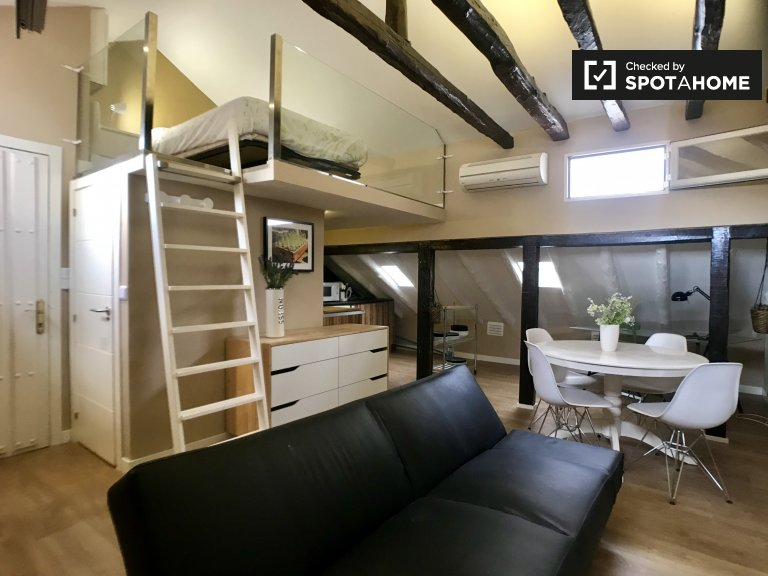 Upscale studio apartment for rent in Trafalgar, Madrid