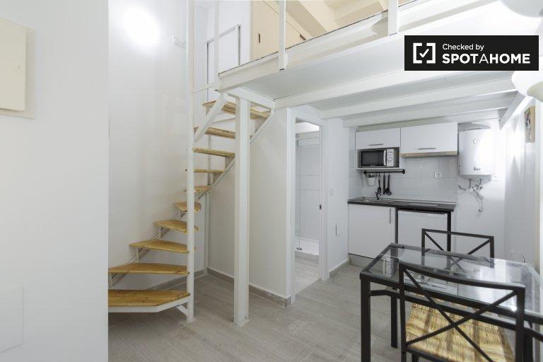 Grand studio à louer à Usera, Madrid