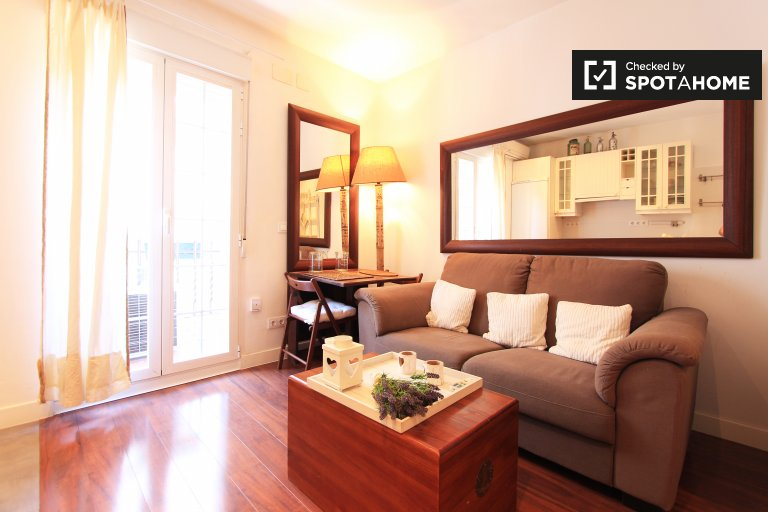 Cozy 1-bedroom apartment for rent in Guindalera, Madrid