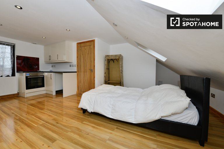 Monolocale in affitto a Redbridge, Londra