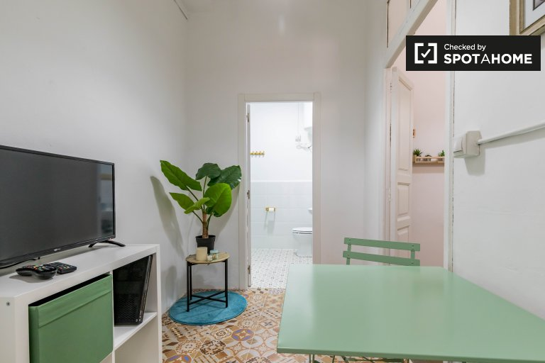 Nice 1-bedroom apartment for rent in Ciutat Vella, Valencia