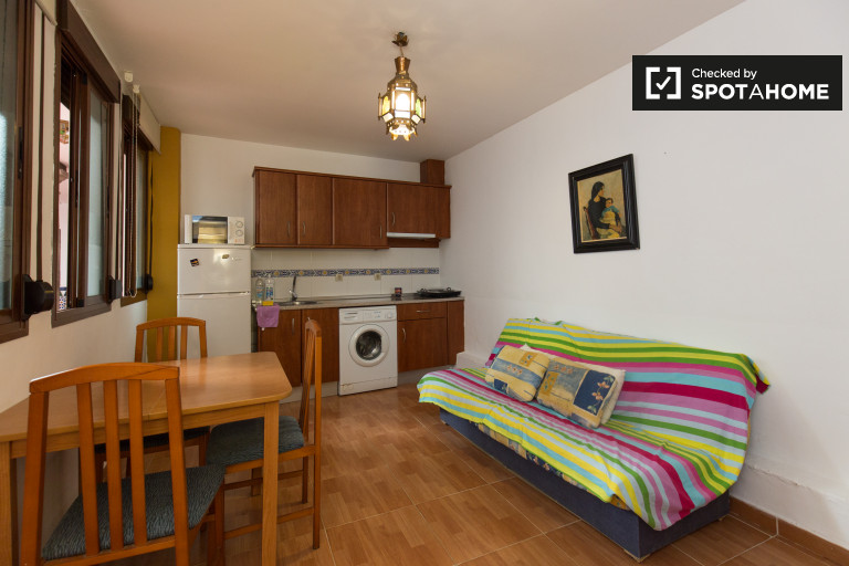 Peaceful 1-bedroom apartment for rent in Centro