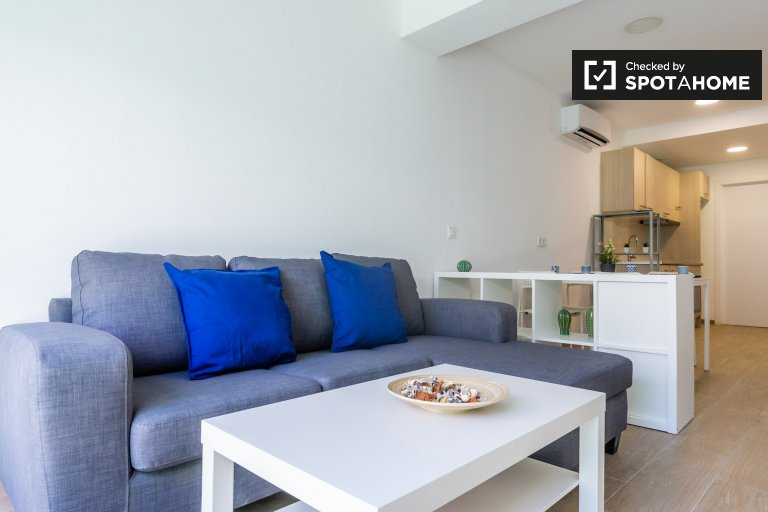 Elegancki apartament z 1 sypialnią do wynajęcia w Sants, Barcelona