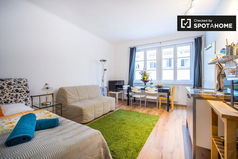 Bright studio apartment for rent in Margareten