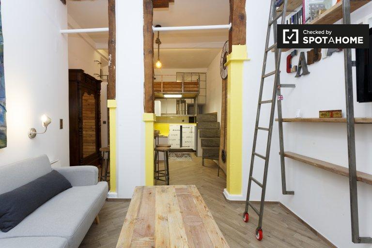 Studio apartment for rent in Lavapies, Madrid