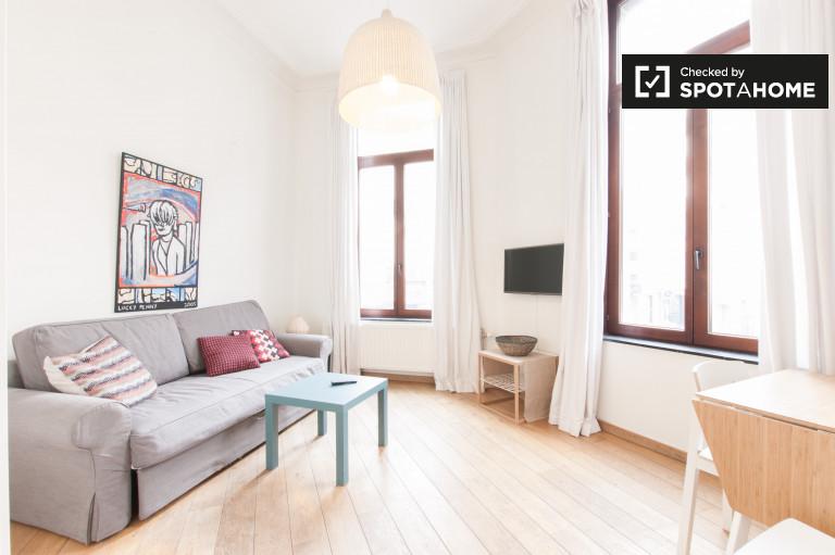 Lekki i przestronny apartament typu studio do wynajęcia - Ixelles, Bruksela
