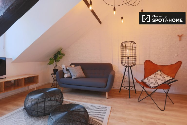 Studio apartment for rent in Center, Brussels