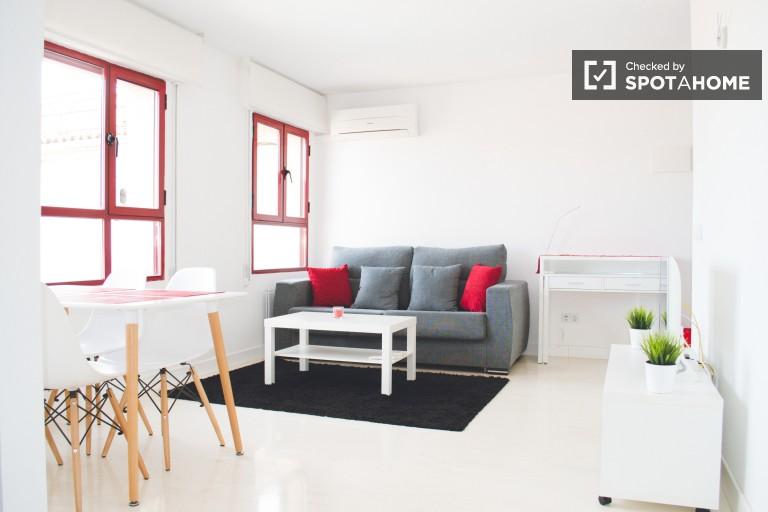 Modern studio apartment for rent in La Latina, Madrid