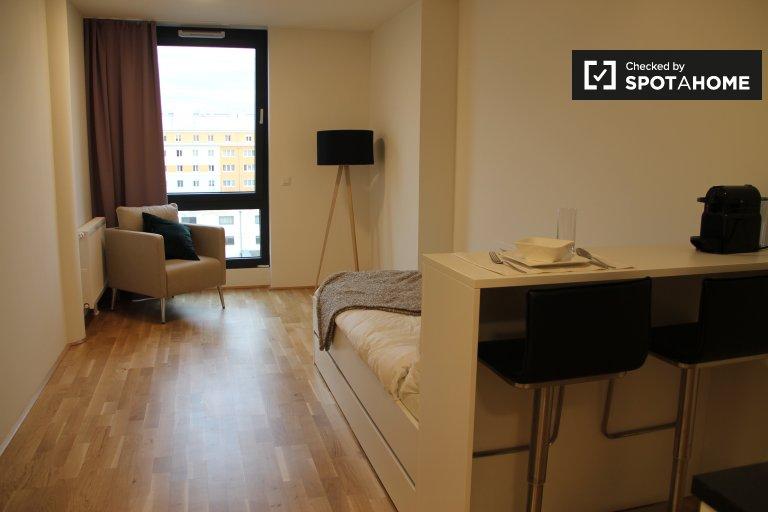 Bright studio apartment for rent in Brigittenau, Vienna
