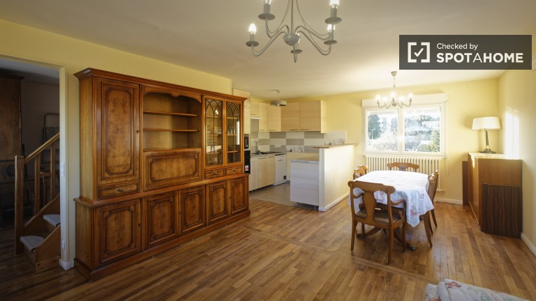 Renovated 4 Bedroom Flat for Rent in Antony - Paris