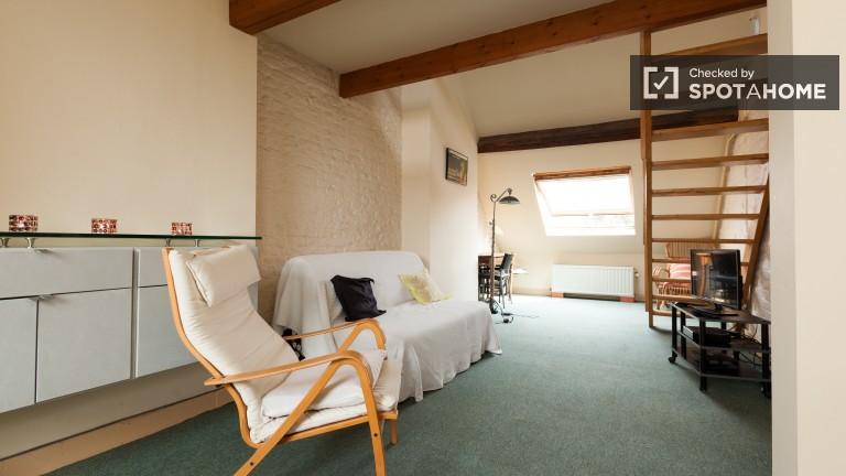 Appartement de 1 chambre à louer à Ixelles, Bruxelles