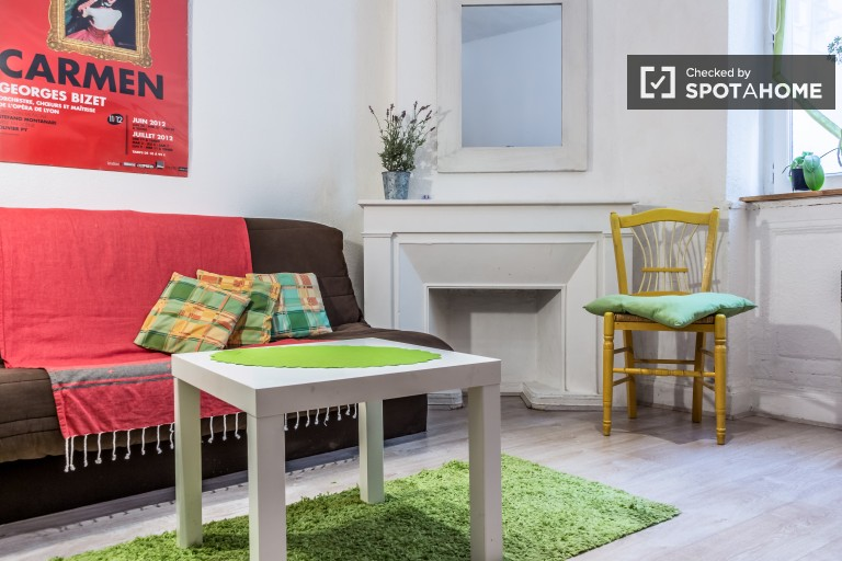 Chic Studio for Rent in Croix Rousse, Lyon