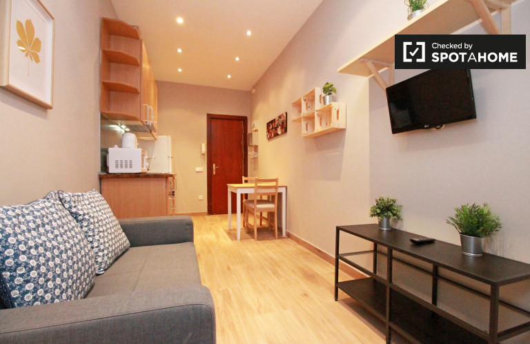 1-bedroom apartment for rent in Sants, Barcelona