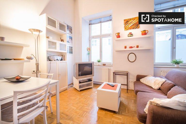 Cosy studio apartment for rent in Leopoldstadt, Vienna