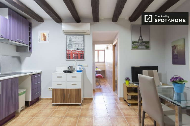 Renovated 2-bedroom apartment for rent in La Latina, Madrid