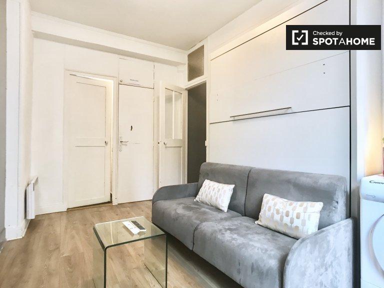 Chic studio apartment for rent in Paris' 4th arrondissement