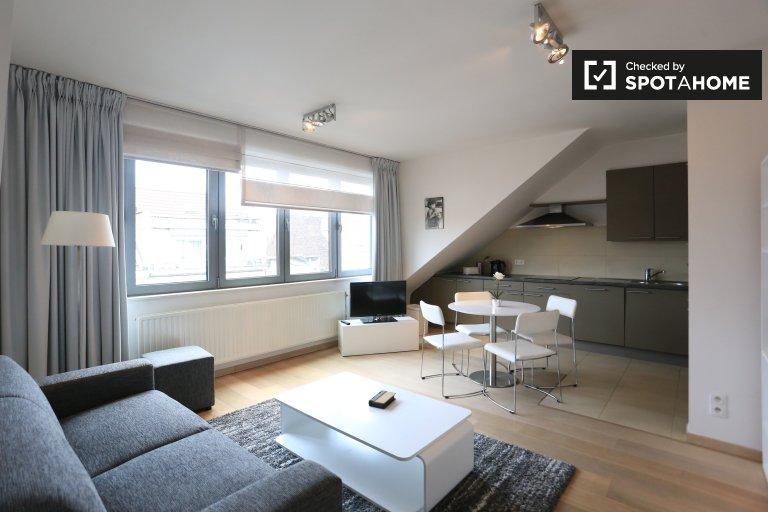 appartement 1 chambre à louer à Ixelles, Bruxelles
