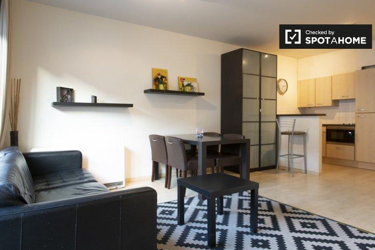 Luminous 2 Bedroom Apartment in Brussels City Centre