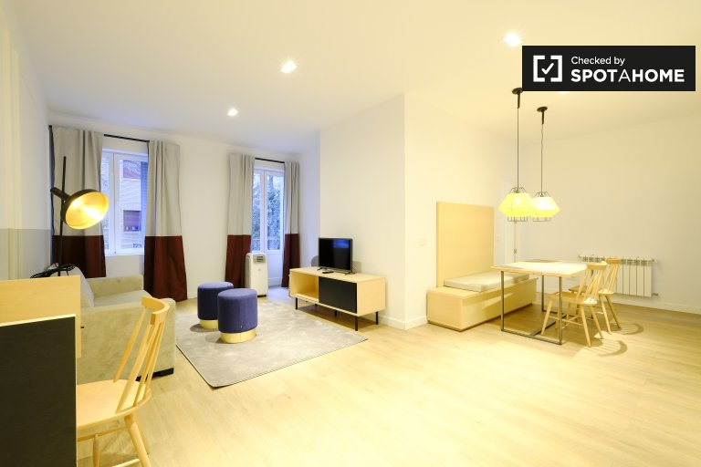 Modern 1-bedroom apartment for rent in Atocha, Madrid