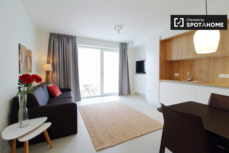 Studio apartment for rent in the centre of Brussels