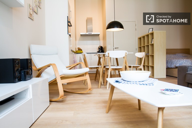 Modern studio apartment available for rent, Central Brussels
