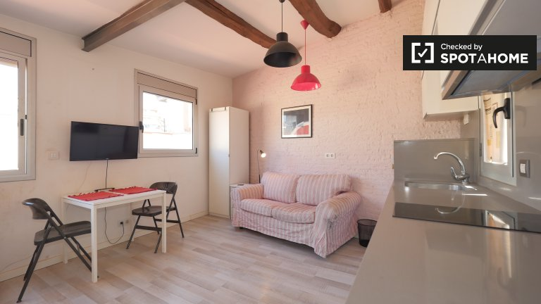 Cute studio apartment to rent in L'Esquerra de l'Eixample