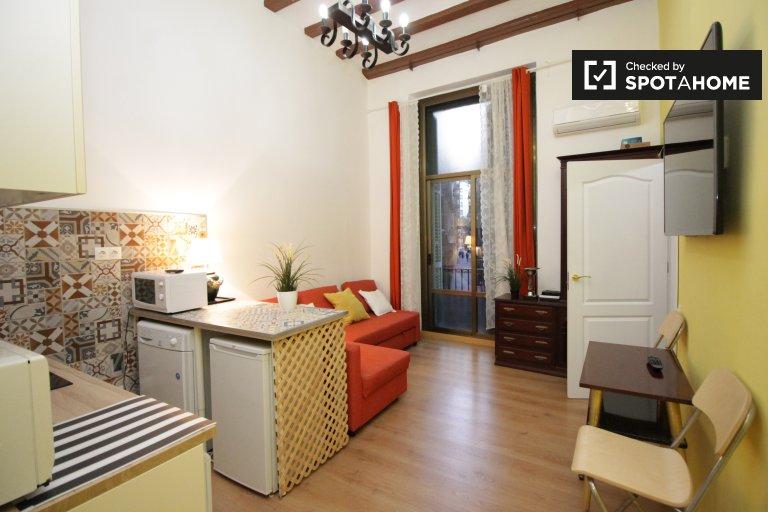1-Zimmer-Wohnung zur Miete in Gotico, Barcelona