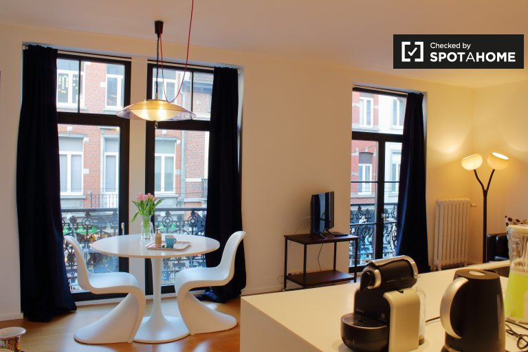 Modern studio apartment for rent in Ixelles, Brussels