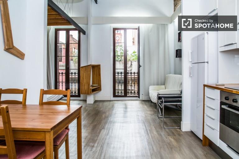 Sunny Studio Apartment in Vila de Gràcia, Barcelona