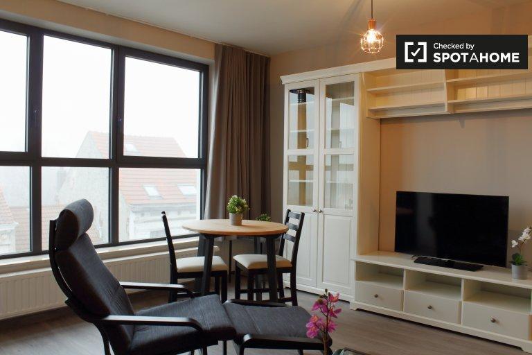 Sonniges Studio-Apartment zur Miete in Anderlecht, Brüssel