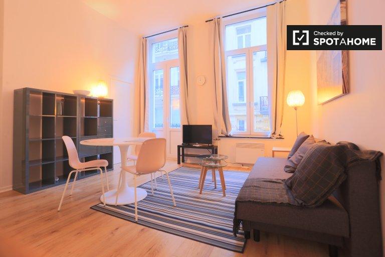 Buen apartamento en alquiler en el centro de la ciudad, Bruselas