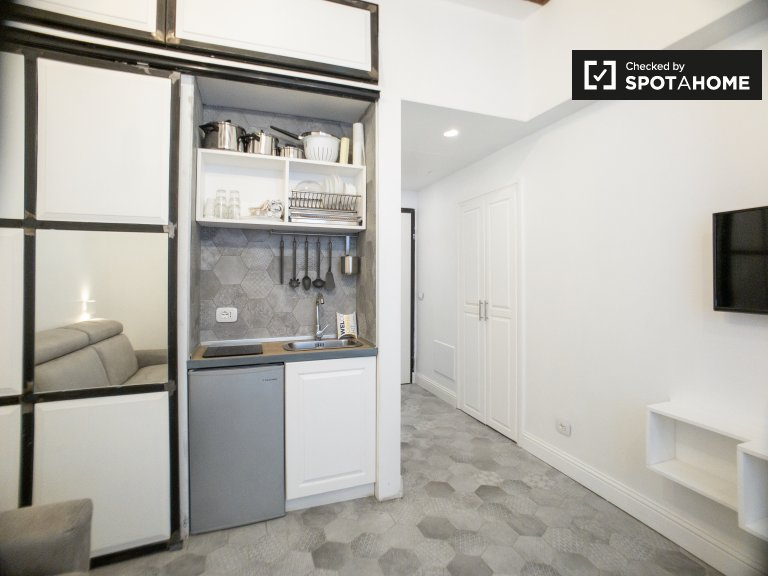 Studio zu vermieten in Bocconi in Mailand