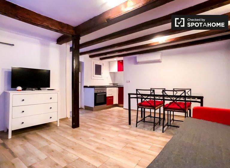 Moderno apartamento de 1 dormitorio en alquiler en El Raval, Barcelona