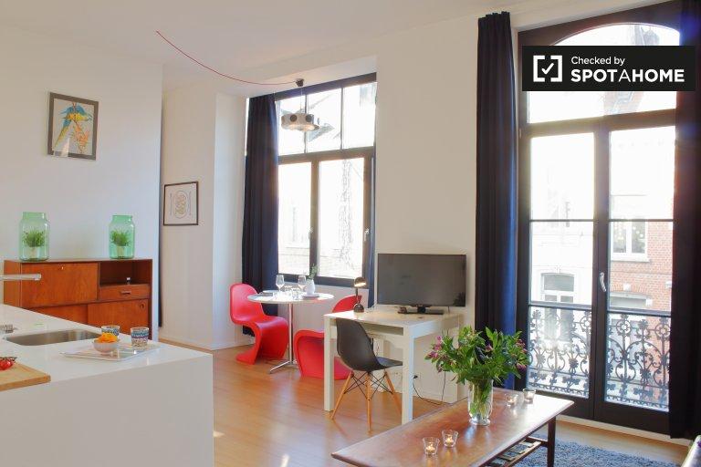 Studio moderne à louer à Ixelles, Bruxelles