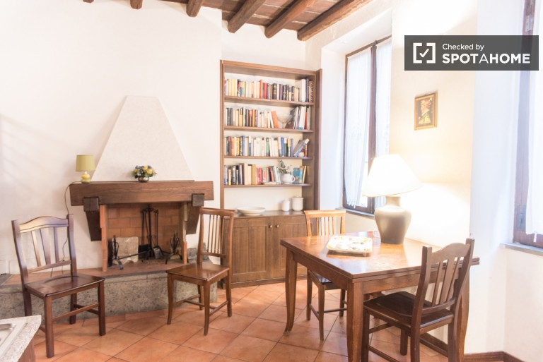 Cosy 2 bedroom 1 bathroom apartment in charming Trastevere