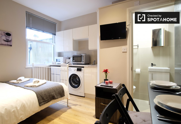 Stylish studio flat for rent in Willesden Green