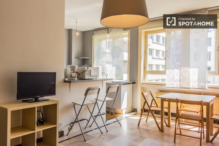 Urlaub mit Haustier 1-Zimmer-Wohnung zur Miete in Brotteaux, Lyon