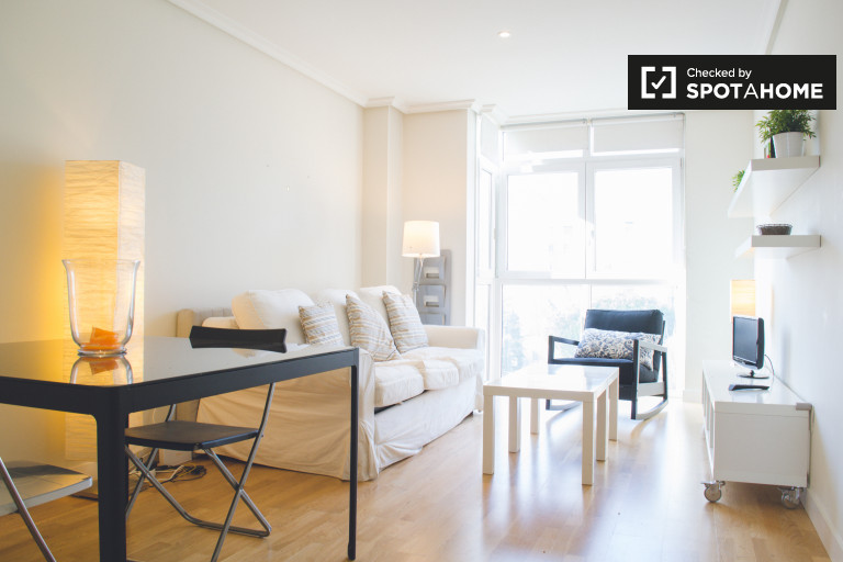 Stunning 1-bedroom apartment with AC for rent near Retiro