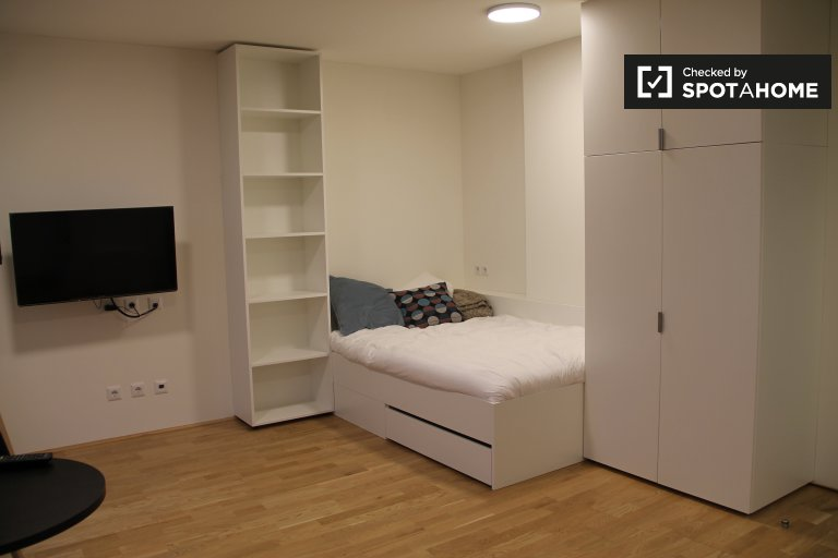 Charmantes Studio-Apartment zur Miete in Brigittenau, Wien