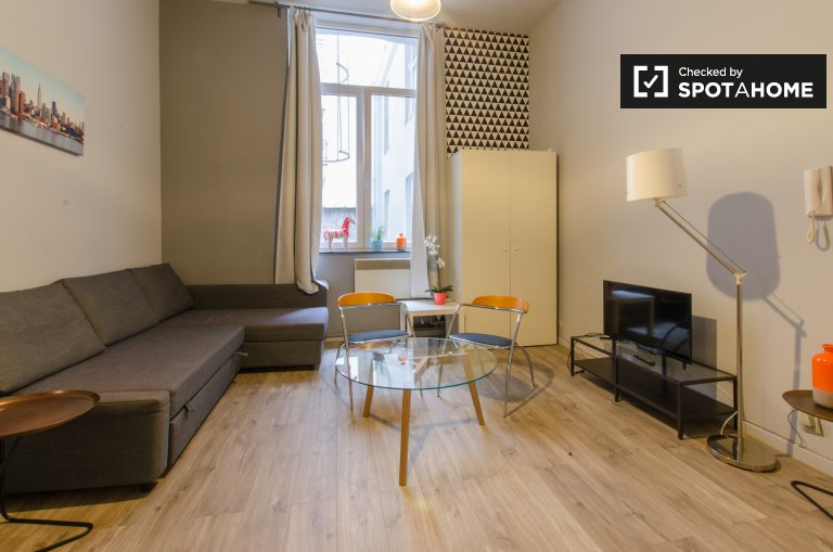 Comfy studio apartment for rent in Brussels city centre