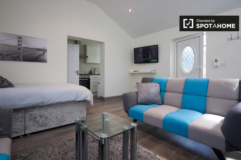 Studio apartment for rent in Liffey Valley Park, Dublin
