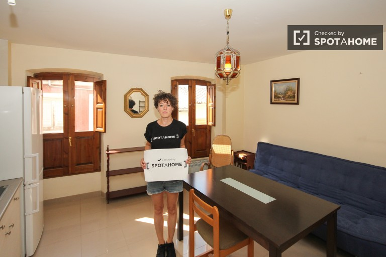 Comfortable 1 bedroom apartment for rent in Granada city center near the Cathedral