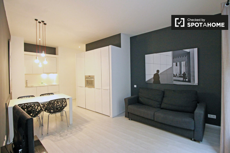 Modern studio apartment with 3 balconies for rent in Barri Gòtic